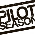 What's Pilot Season, Hiatus and Episodic Season?